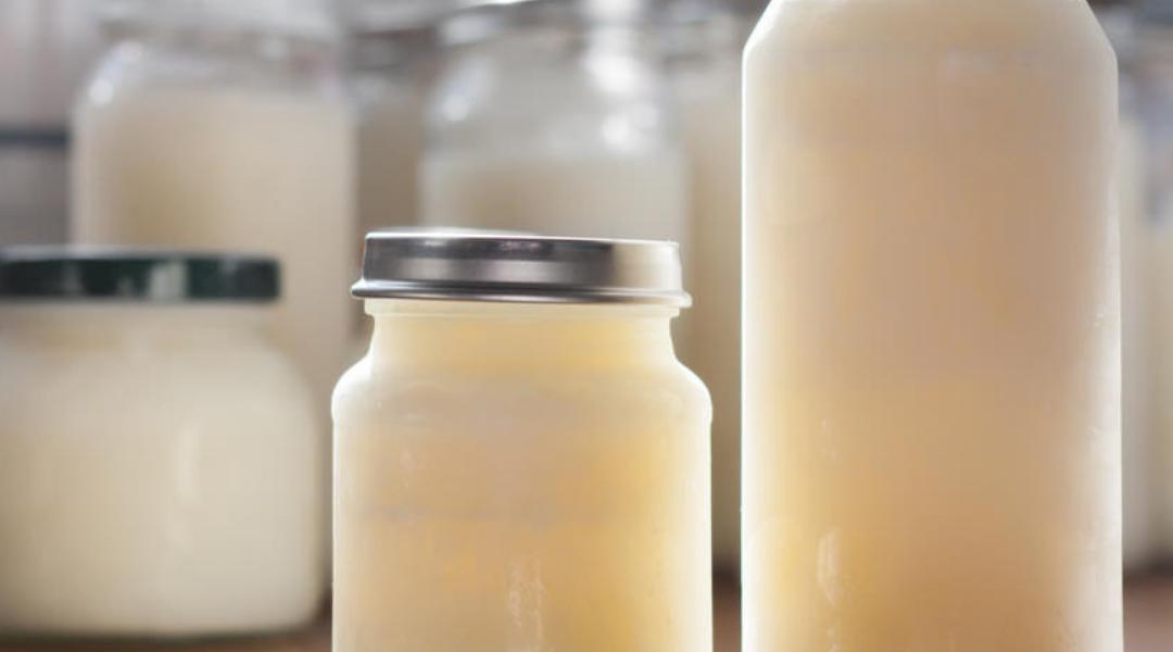 leite maduro leite de transição colostro